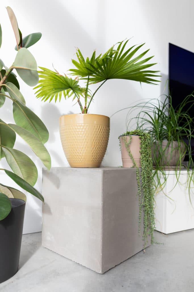 House Mesh Design Wohnen mit Wohnbeton